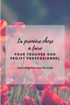 blog coaching de carri re reconversion mieux tre au travail trouver un emploi trouver sa. Black Bedroom Furniture Sets. Home Design Ideas